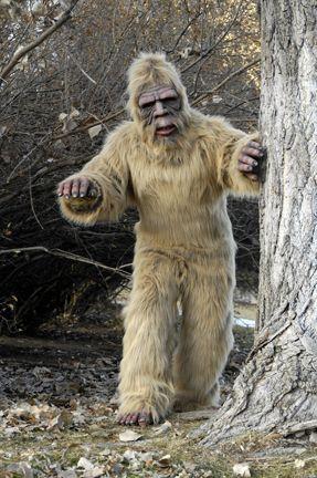Bigfoot Goes Skiing. & UndeadMonsters - Gorilla Suits Gorilla Costumes Gorilla Suit ...