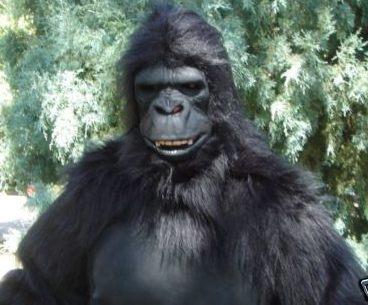 UndeadMonsters - Gorilla Suits Gorilla Costumes Gorilla Suit Gorilla Costume Bigfoot Costume Yeti Costume & UndeadMonsters - Gorilla Suits Gorilla Costumes Gorilla Suit ...